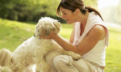 Kvinde og hund