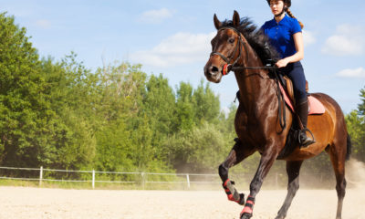 Ridesport